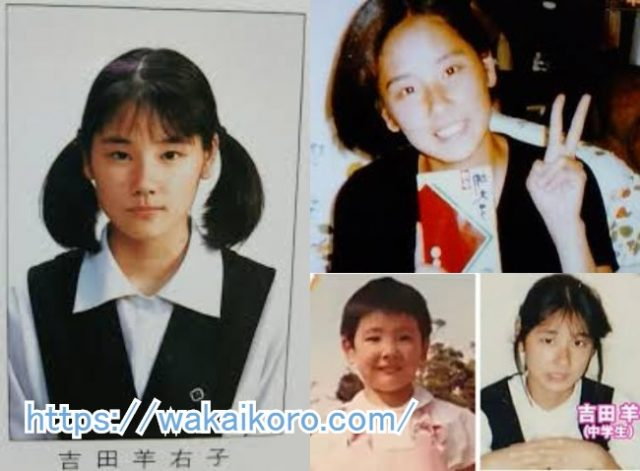 吉田羊の若い頃の画像!髪型や出演ドラマなど