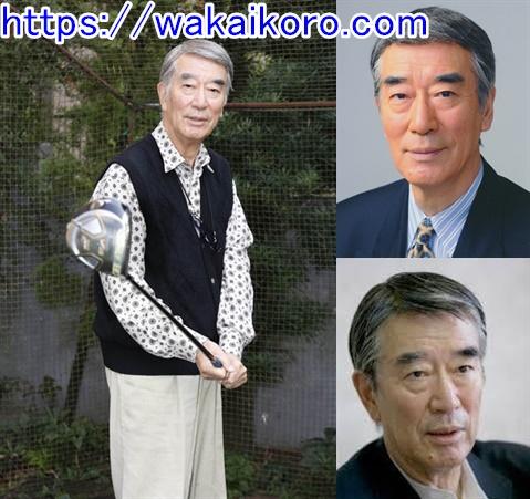 中村敦夫の画像 p1_18